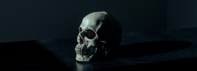 Spooky Sapphic YA Books