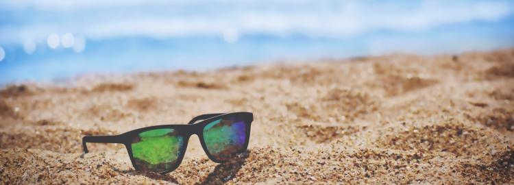 Books That Feel Like Summer (Adult Edition)