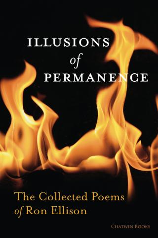 Illusions of Permanence by Ron Ellison